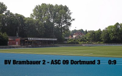 D3 feiert Herbstmeisterschaft mit einem 9:0 Auswärtssieg beim BV Brambauer 2